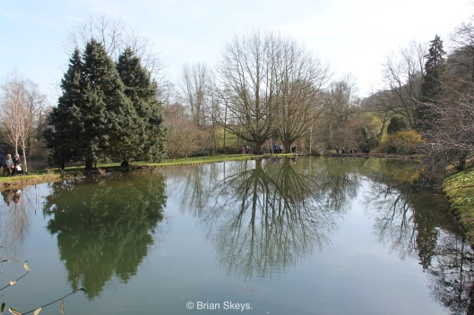 Three lakes at Little Malvern Court.