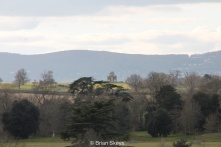 The Panorama with the Malvern Hills in the background.